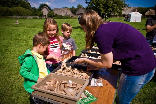 Animal Bone specialist Jen Jones educating the next generation of archaeologists